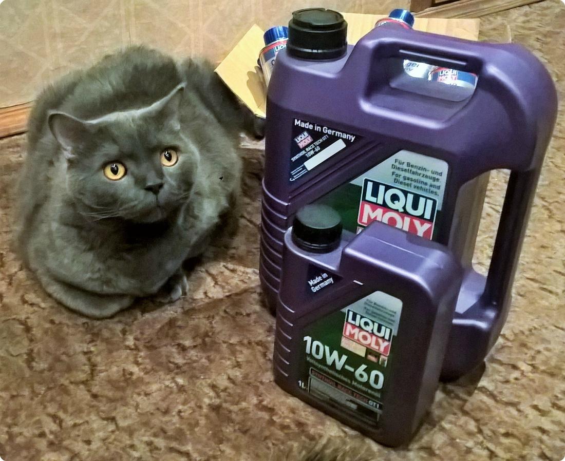 Моторное масло 10w60 для VW и кот
