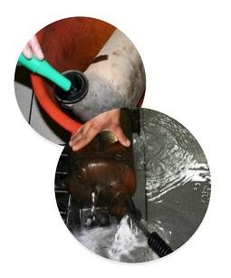 Очистка сажевого фильтра с демонтажем
